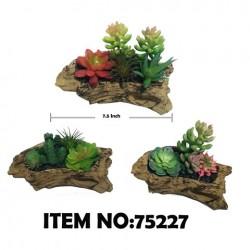 BONSAI PLANT 75227