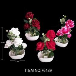 BONSAI PLANT ROSES 76489